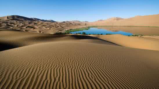 desert oasis 4k wallpaper