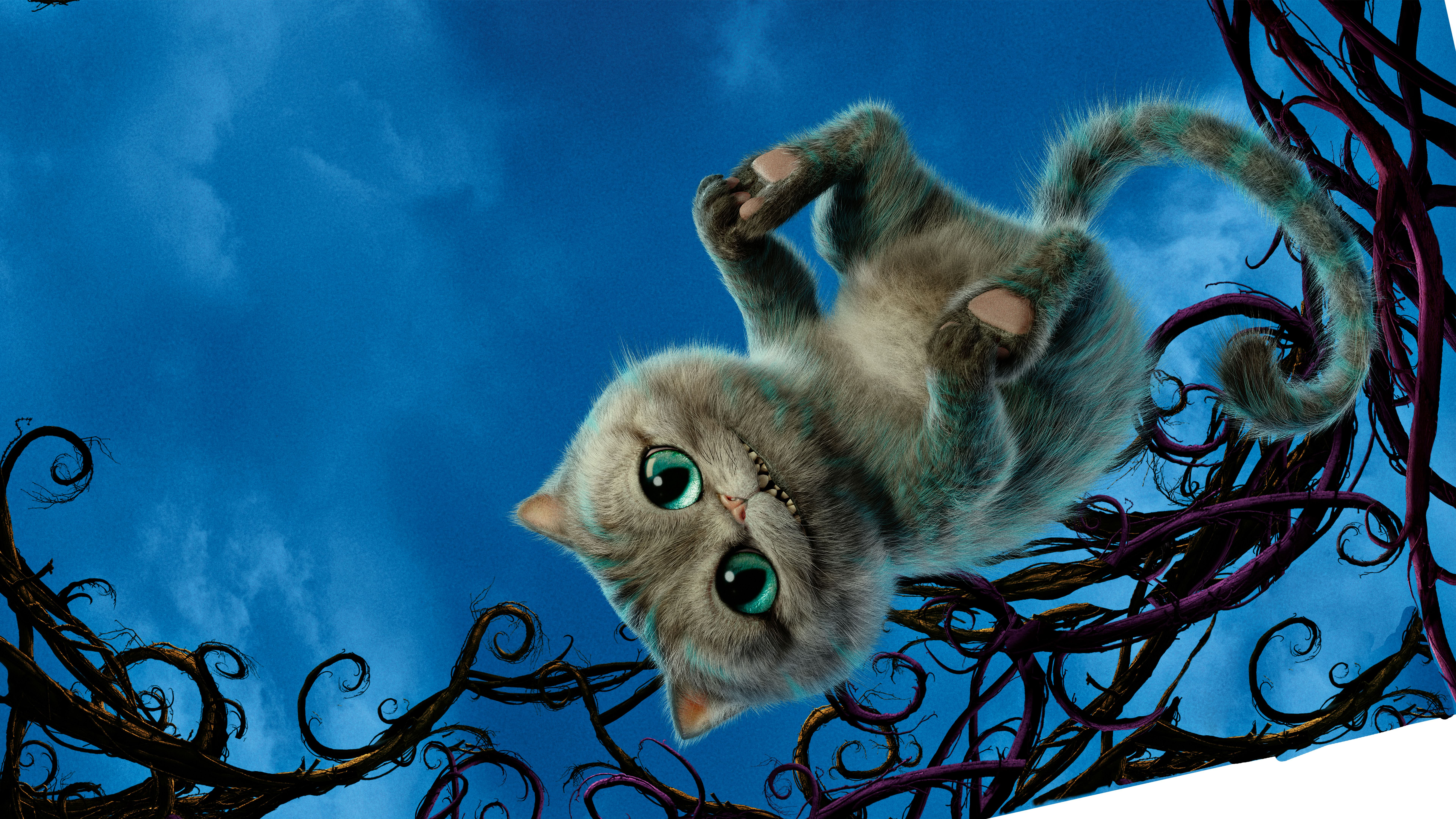 cheshire cat alice through the looking glass 8k wallpaper