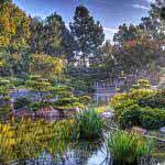 earl burns miller japanese garden california state university long beach california united states uhd 4k wallpaper