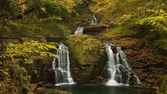 forest waterfall uhd 8k wallpaper