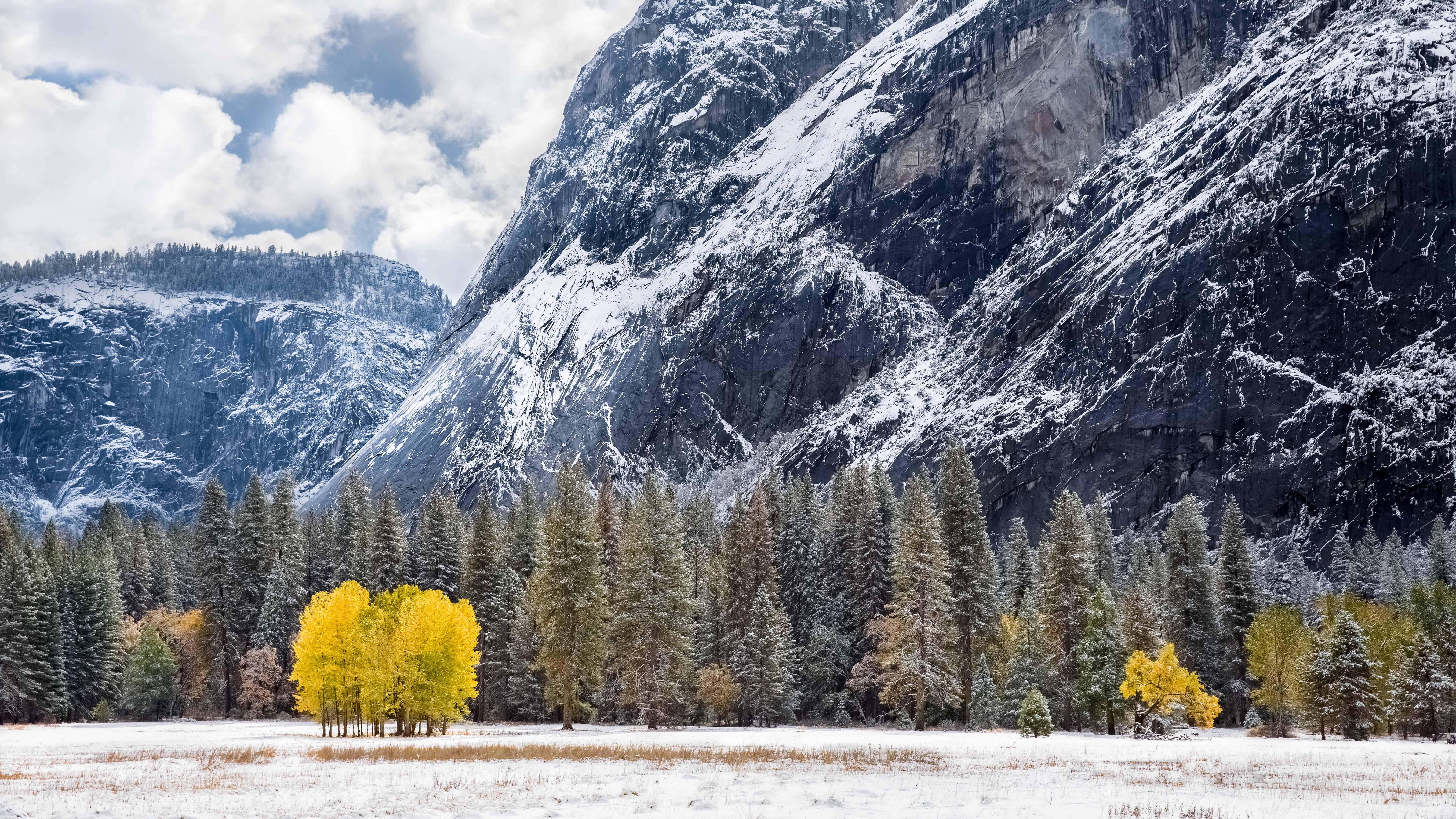 winter tuolumne meadows california united states uhd 8k wallpaper