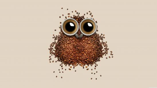 coffee bean owl uhd 8k wallpaper