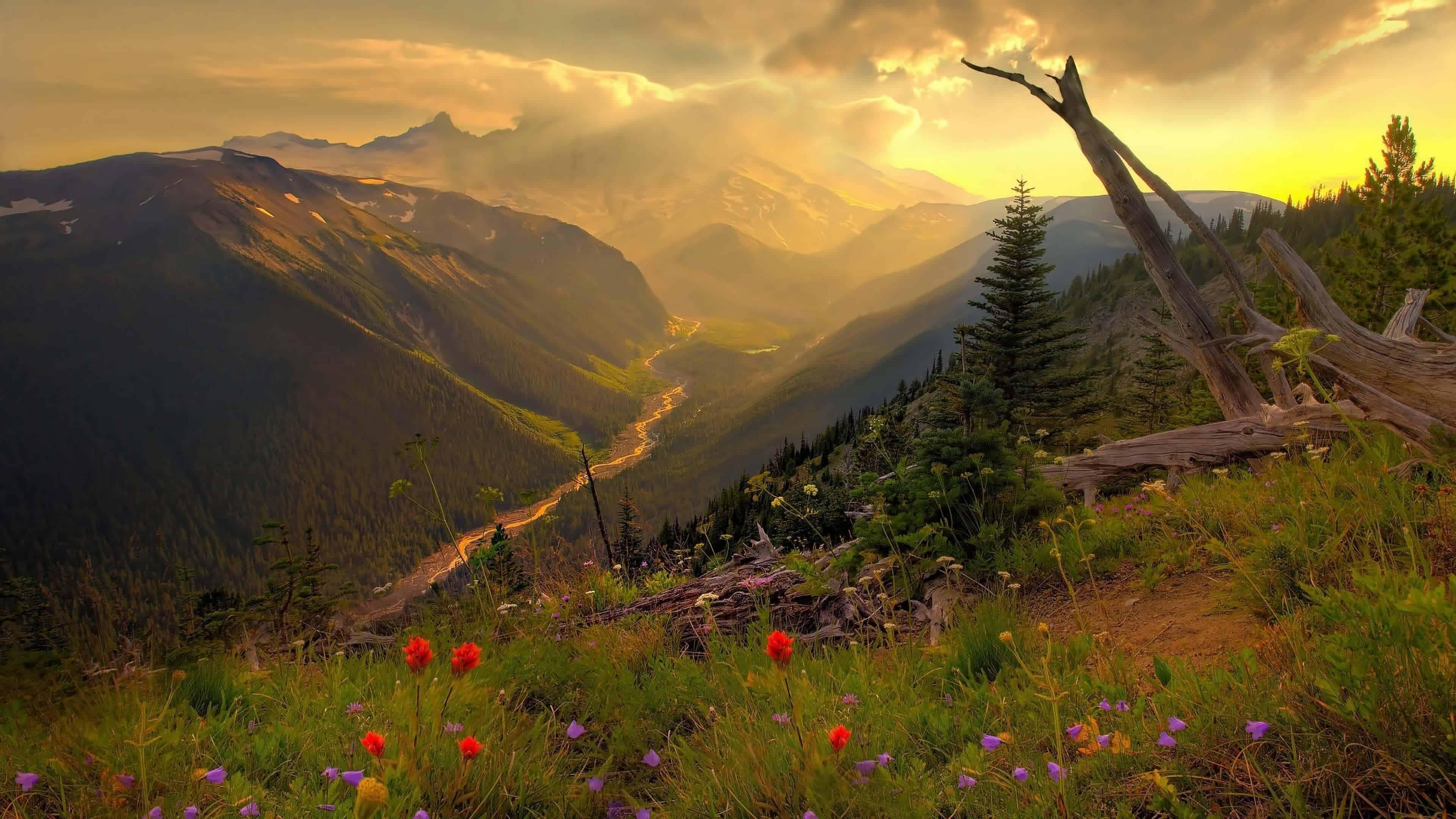 Unreal Engine 4 Landscape UHD 4K Wallpaper | Pixelz