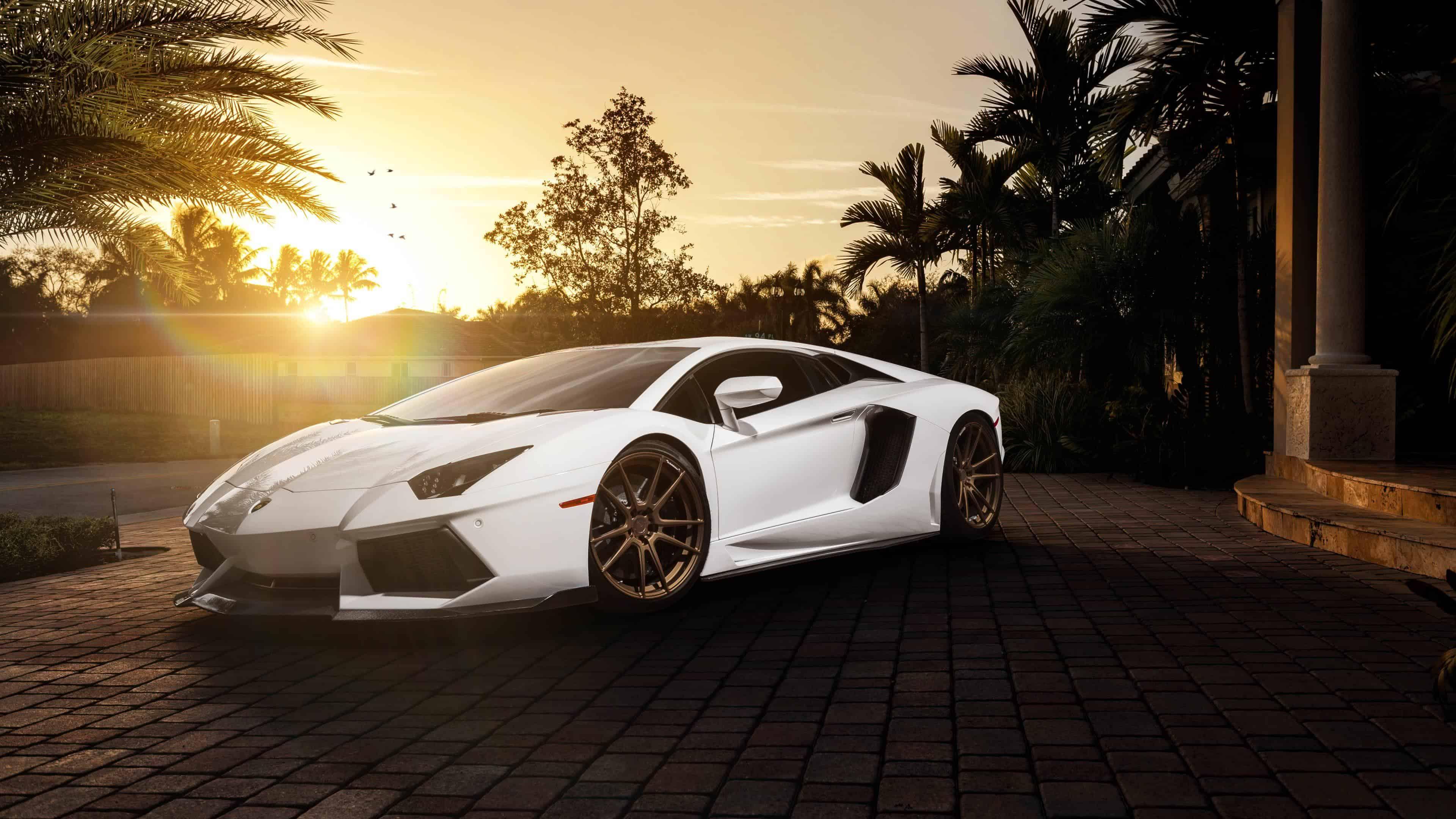 White Lamborghini Uhd 4k Wallpaper Pixelz