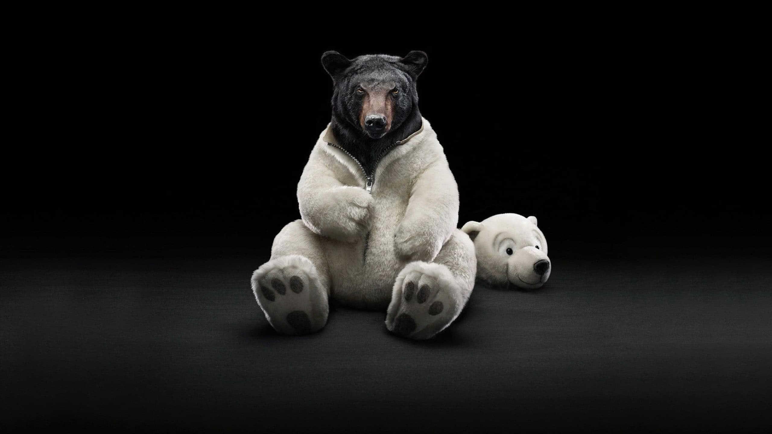 black bear in polar bear costume wqhd 1440p wallpaper
