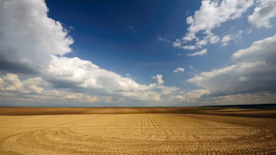 grain field vojvodina serbia wqhd 1440p wallpaper