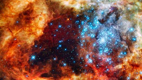 stellar grouping r136 30 doradus nebula wqhd 1440p wallpaper