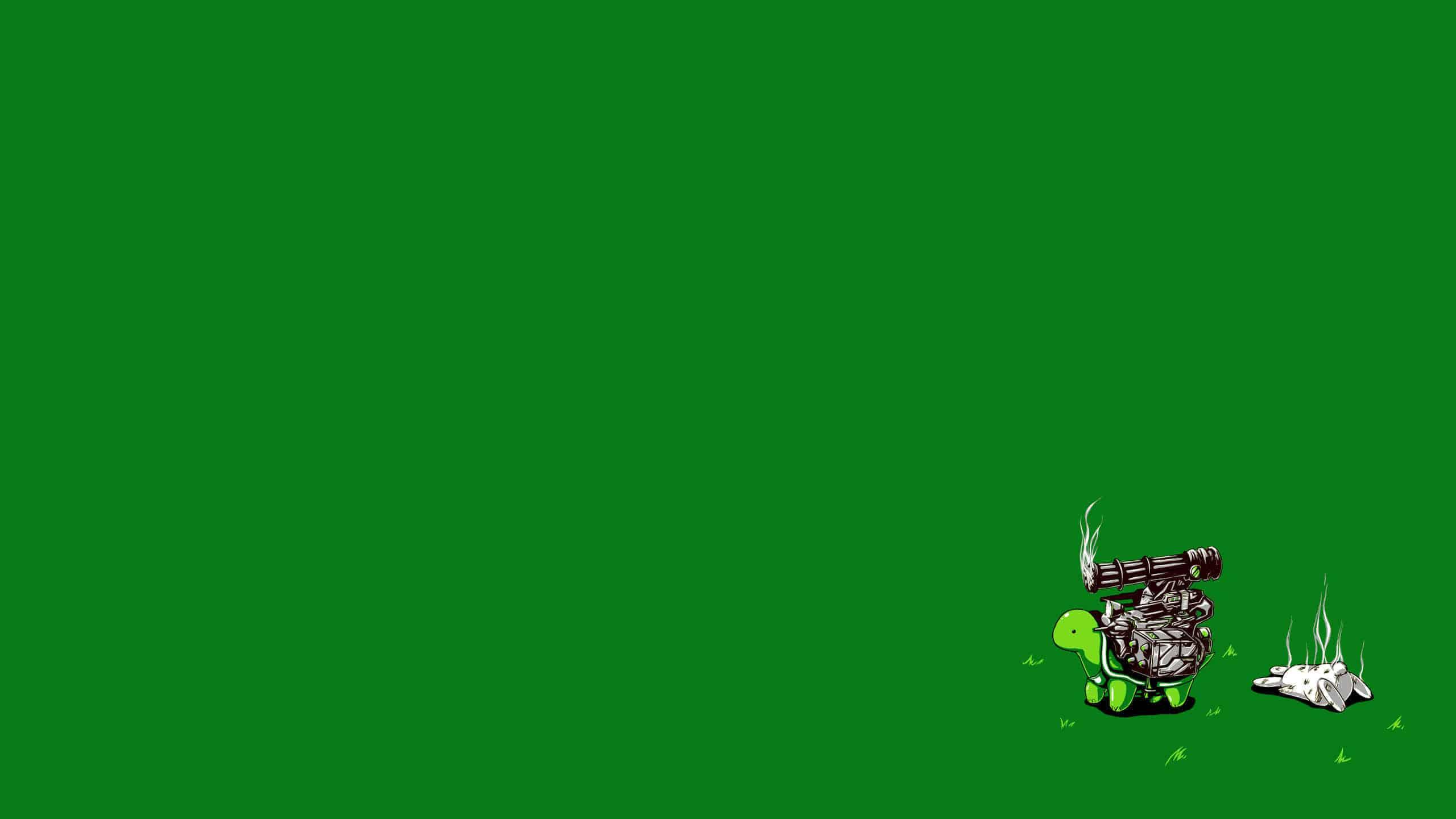 turtle machine gun more dakka meme wqhd 1440p wallpaper
