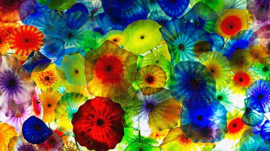 colorful jellyfish uhd 4k wallpaper