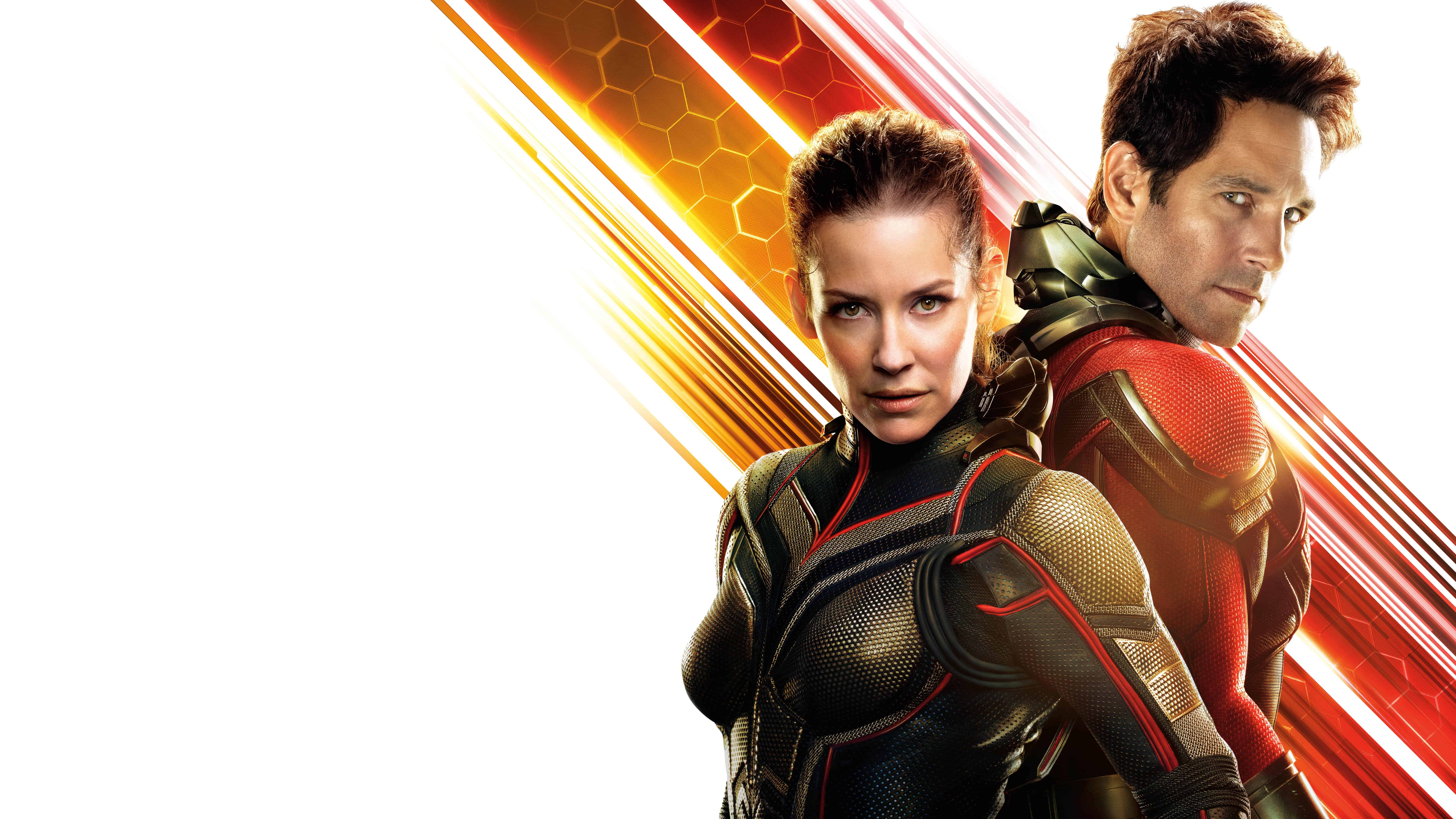 ant man and the wasp uhd 8k wallpaper