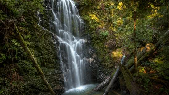 berry creek falls big basin redwoods state park california united states uhd 4k wallpaper