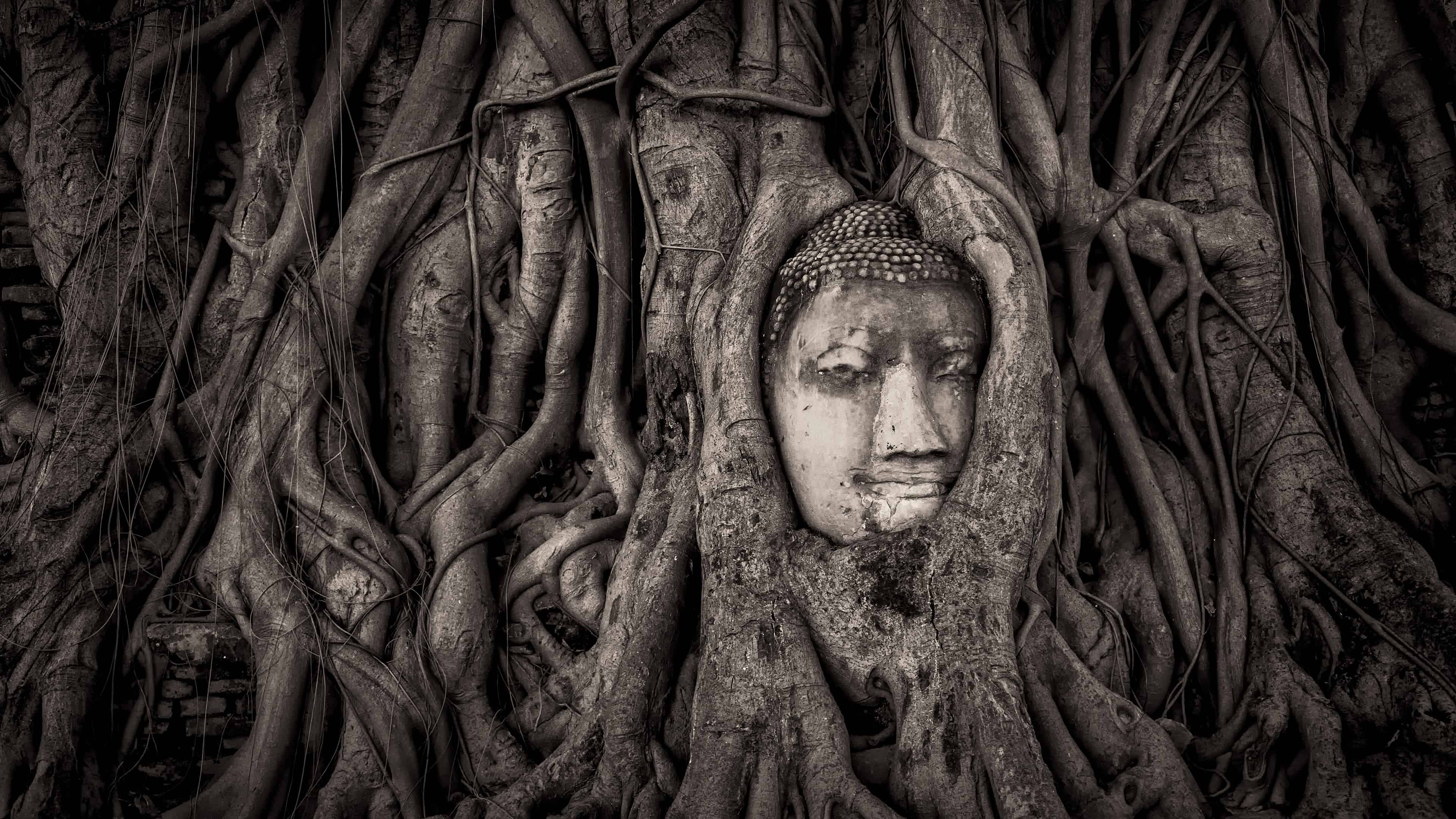 Buddha Head In Tree Roots Wat Mahathat Ayutthaya Thailand