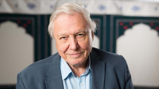 david attenborough portrait uhd 4k wallpaper