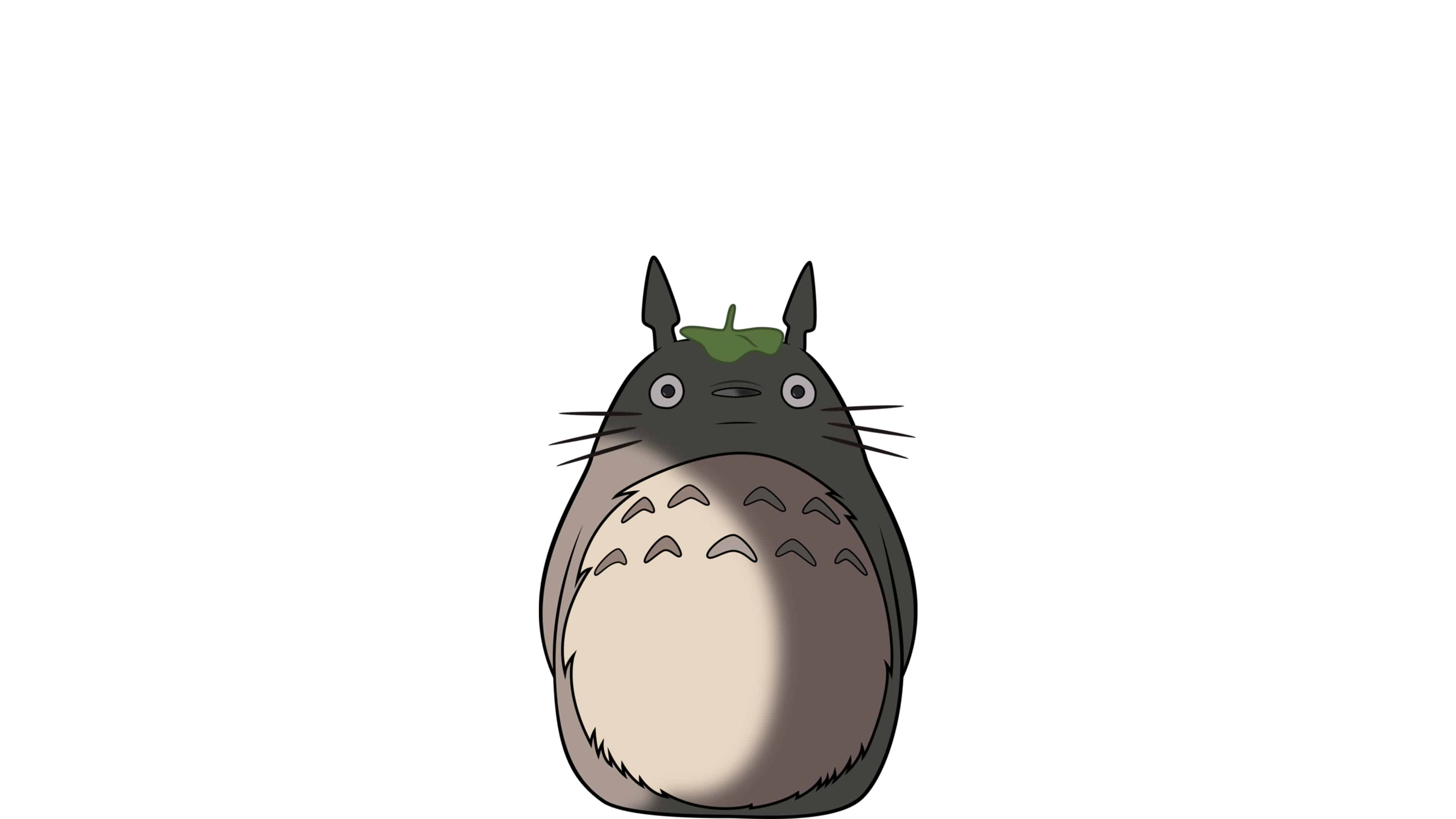 my neighbor totoro uhd 4k wallpaper