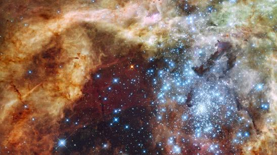 tarantula nebula uhd 4k wallpaper