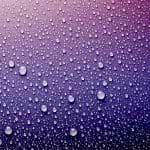 Water Drops On Purple Surface