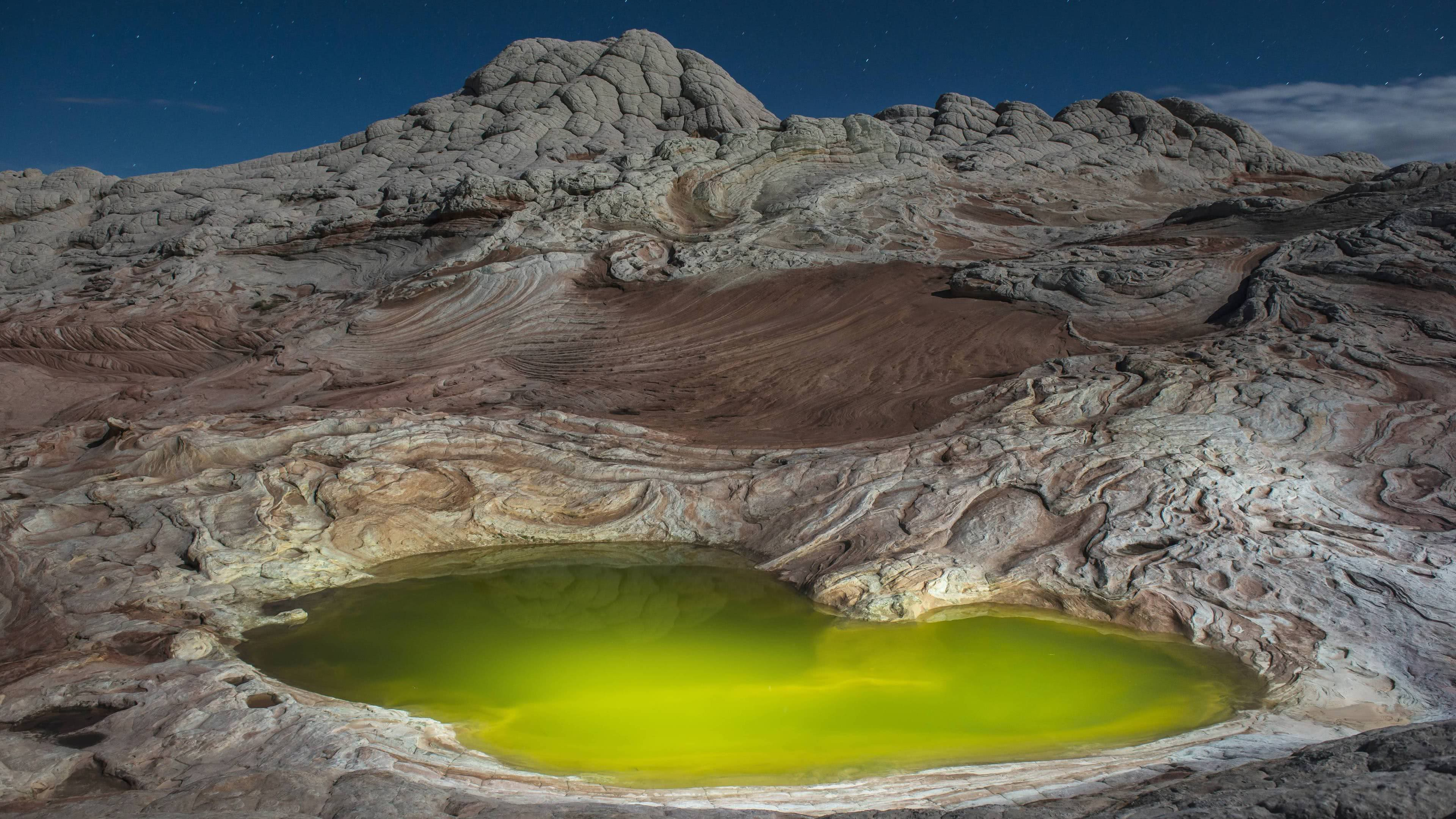 algae pond arizona united states uhd 4k wallpaper