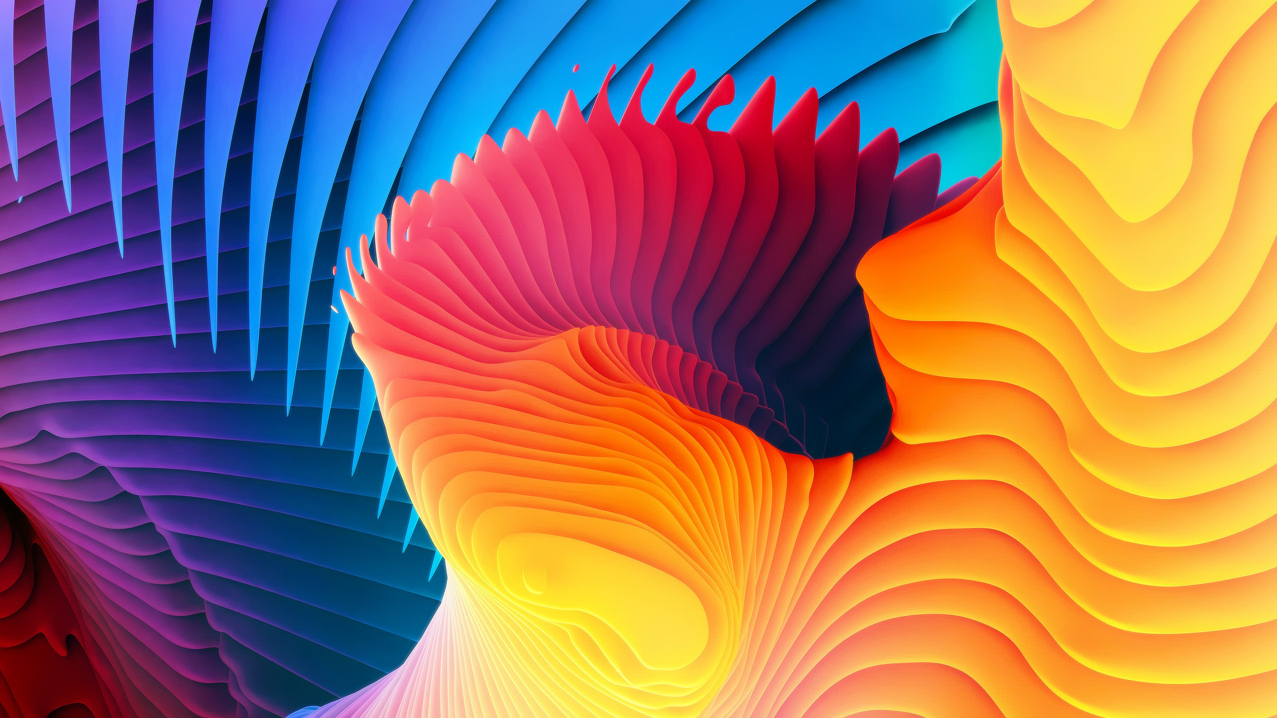 spiral colorful wqhd 1440p wallpaper
