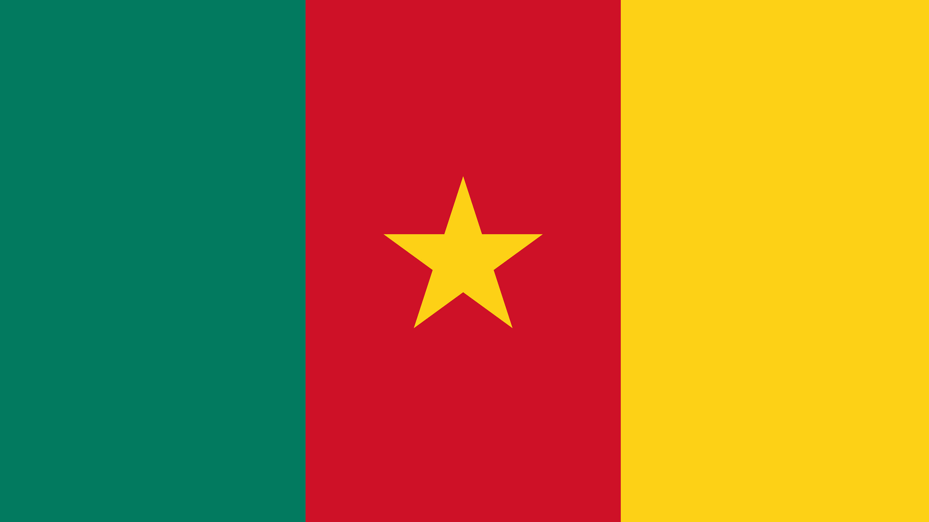 cameroon flag uhd 4k wallpaper