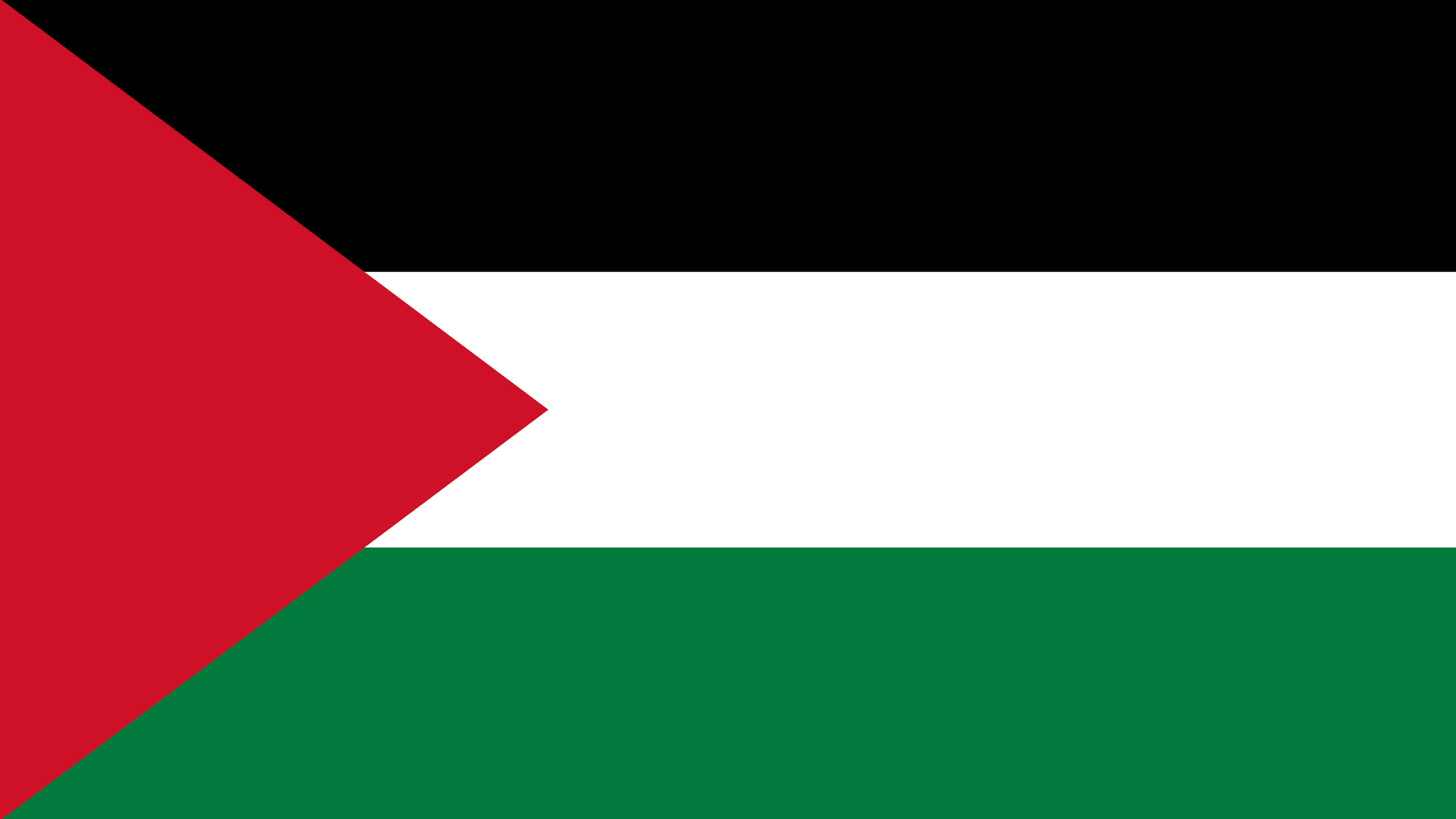 palestine flag uhd 4k wallpaper