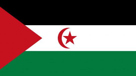 sahrawi arab democratic republic flag uhd 4k wallpaper