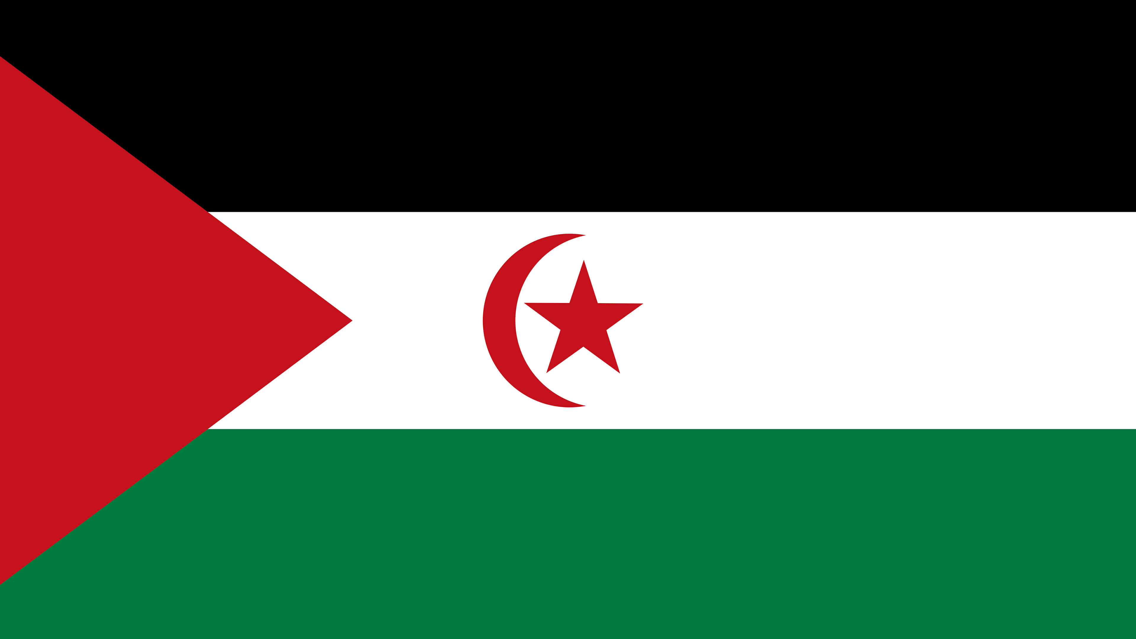sahrawi arab democratic republic flag uhd 4k wallpaper