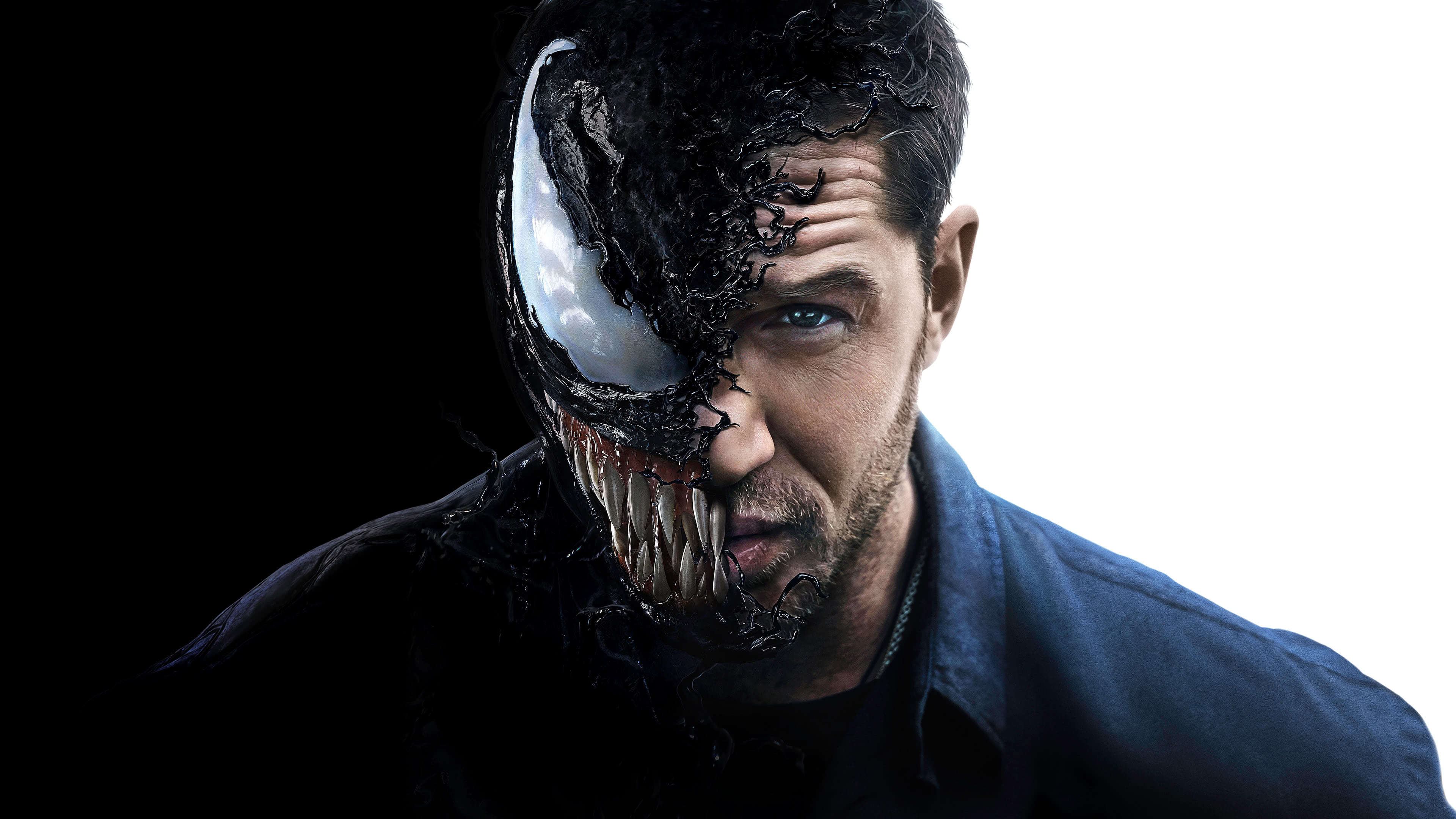 Venom Tom Hardy Uhd 4k Wallpaper Pixelz