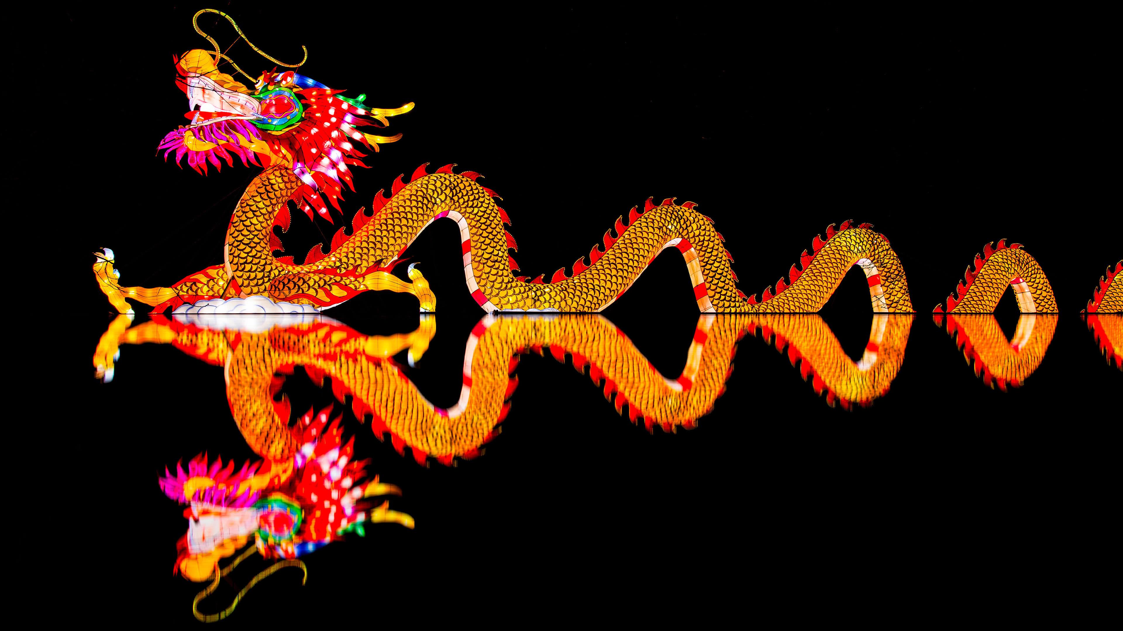 chinese light dragon uhd 4k wallpaper