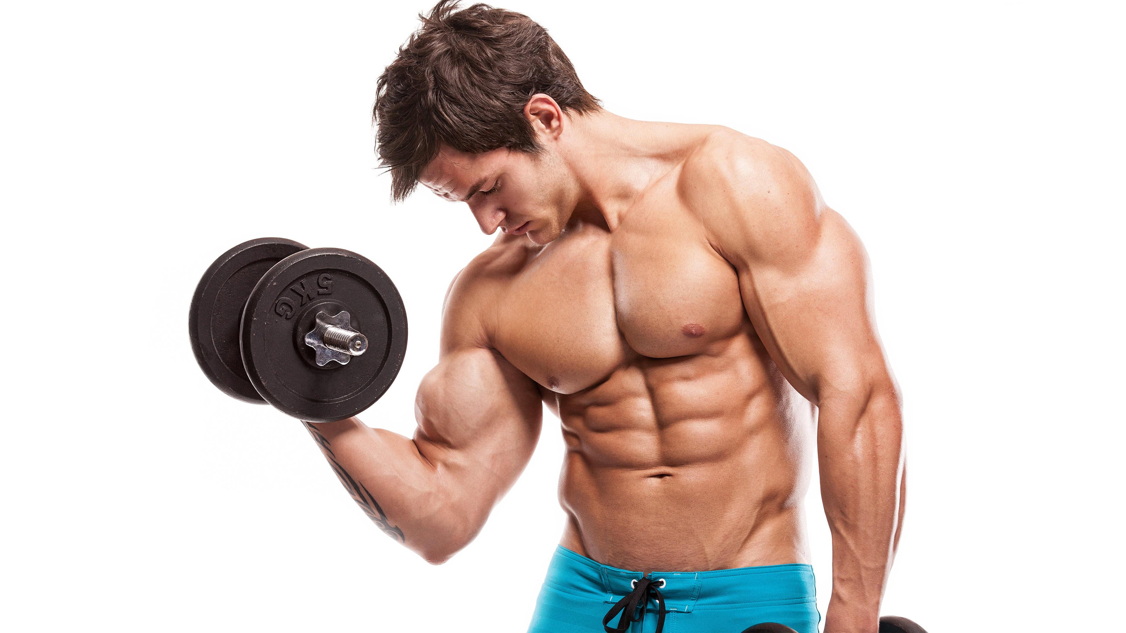 male bodybuilder exercising uhd 4k wallpaper