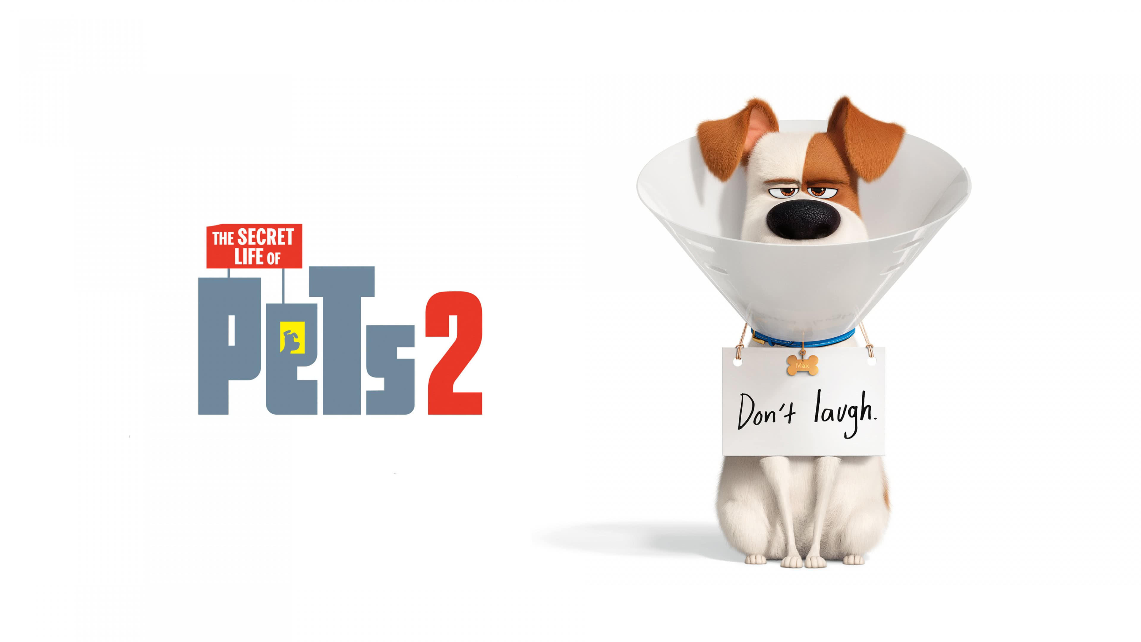 the secret life of pets 2 max uhd 4k wallpaper
