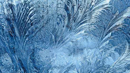 frozen glass wqhd 1440p wallpaper