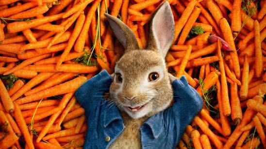 peter rabbit wqhd 1440p wallpaper