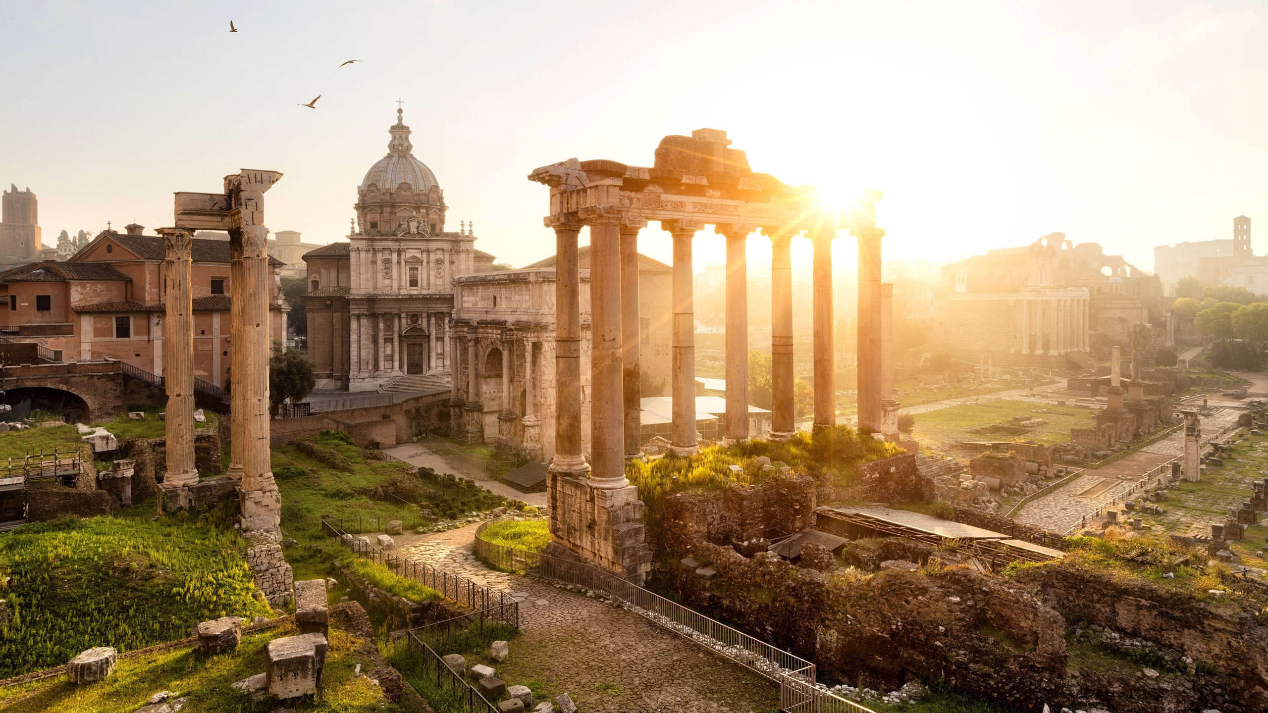 roman forum rome italy wqhd 1440p wallpaper