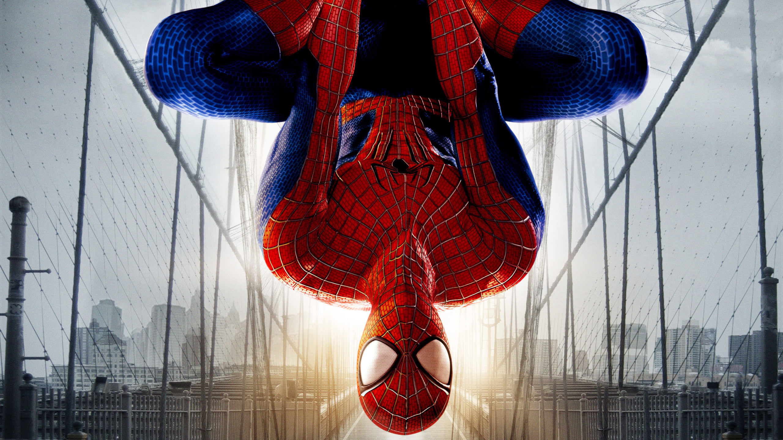The Amazing Spider Man 2 Wqhd 1440p Wallpaper Pixelz