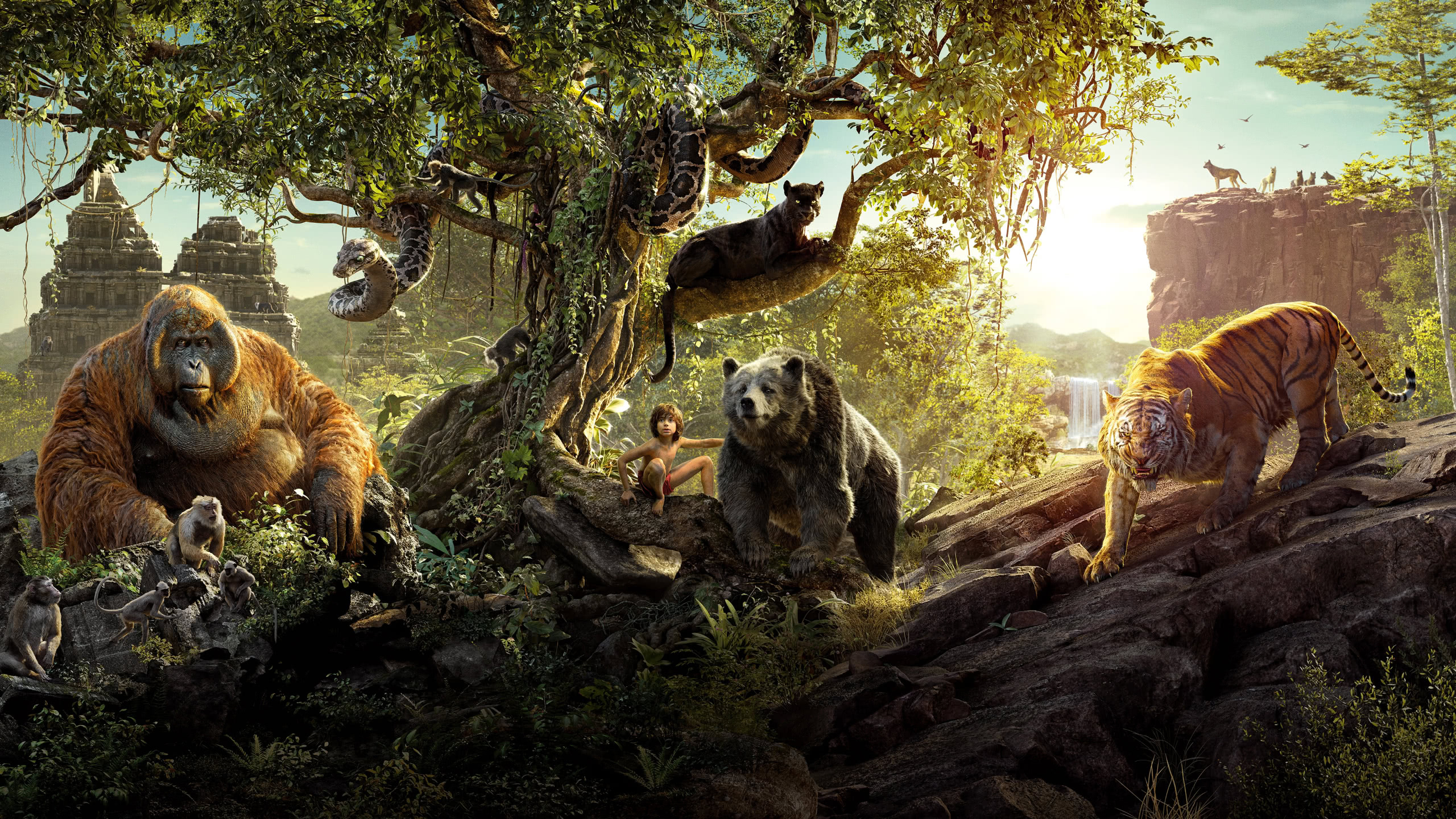 the jungle book mowgli shere khan bagheera king louie wqhd 1440p wallpaper