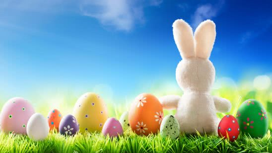 easter rabbit and eggs uhd 4k wallpaper