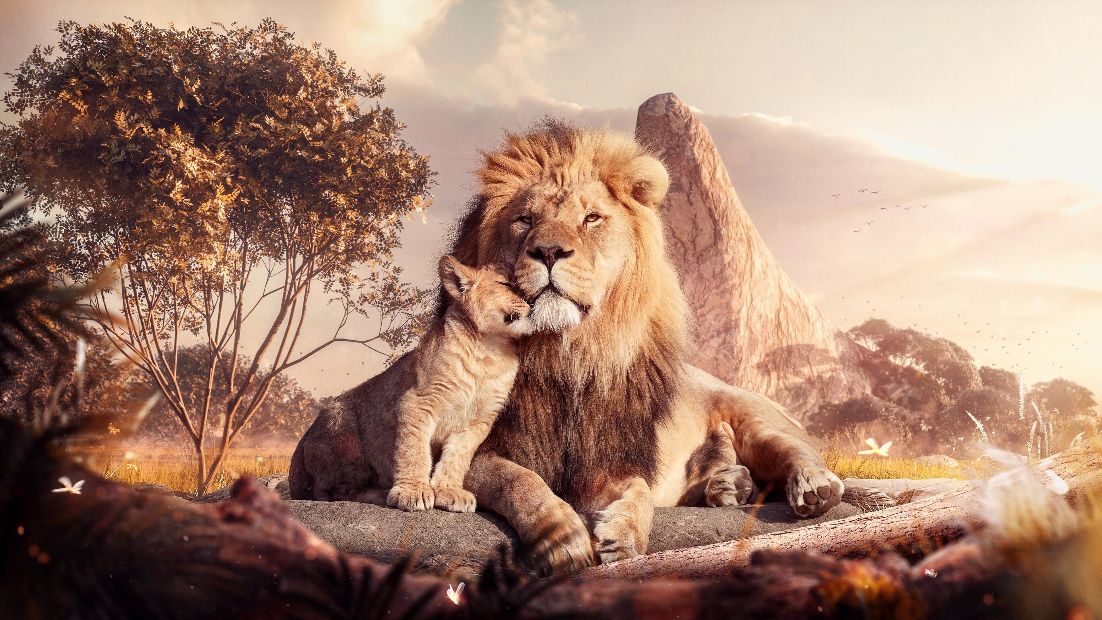 lion and cub uhd 4k wallpaper